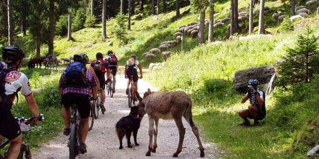 Alpencross mit dem Mountainbike