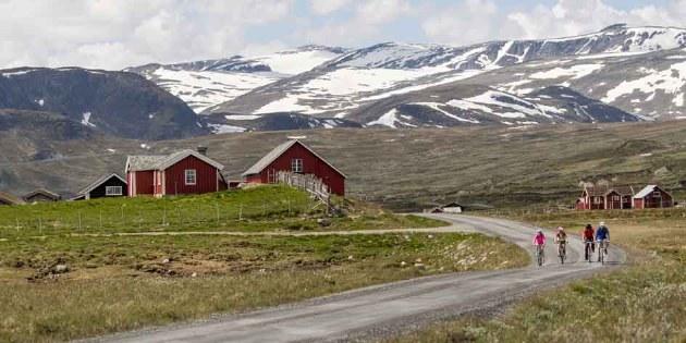 Norwegen_Dovrefjell_Mjoelkevegen
