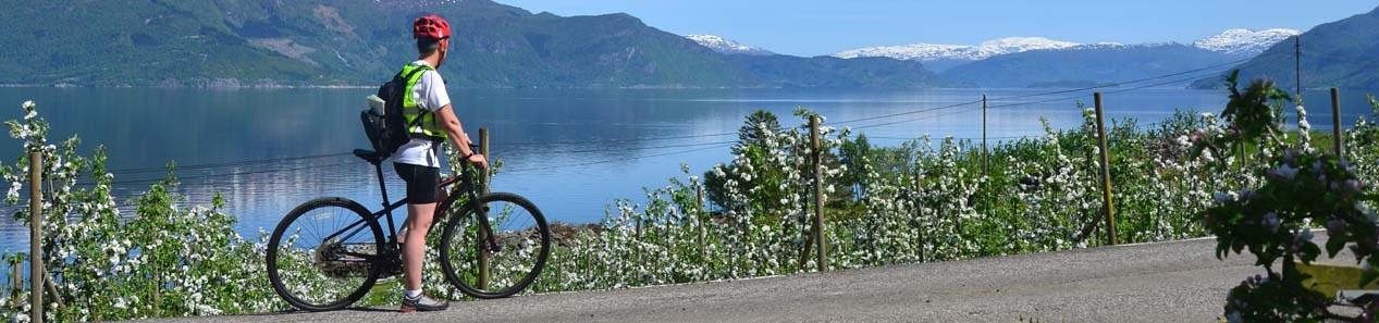 Attraktive Radtouren in Norwegen