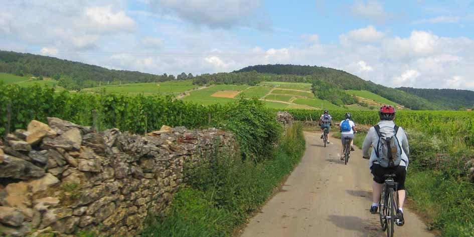 Radreise_Burgund