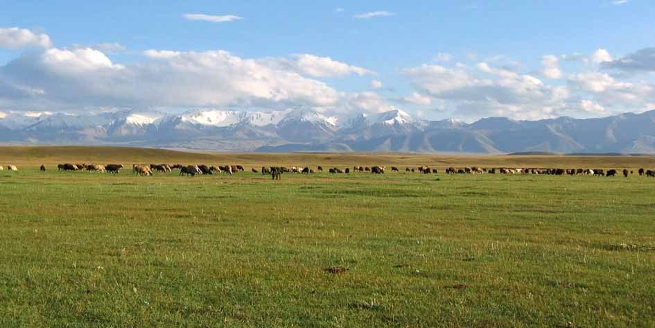 MTB-Tour Kirgistan