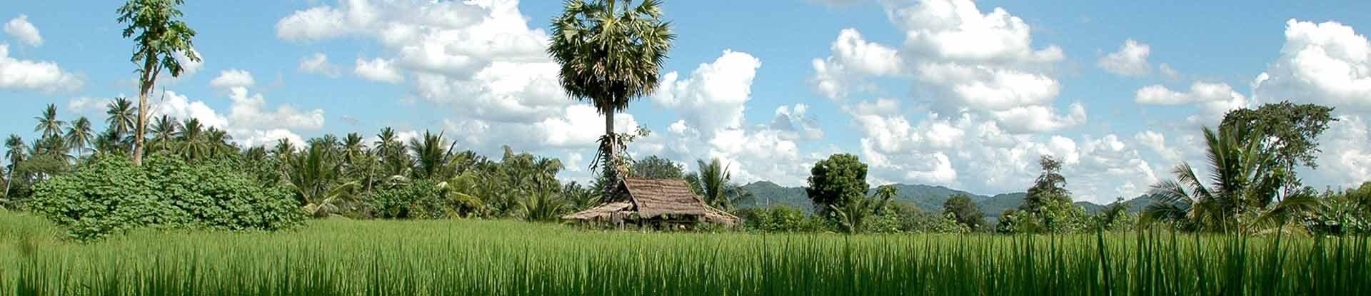 Radreise Süd-Thailand