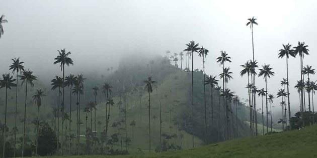 Rennradreisen Kolumbien