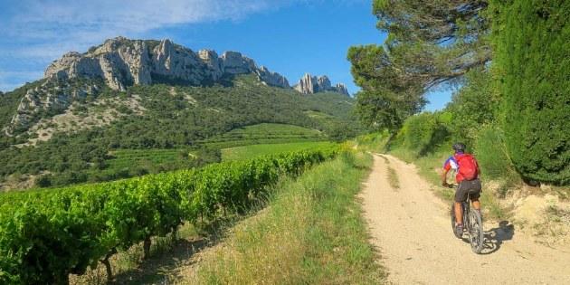 Radreise Mountainbike Provence